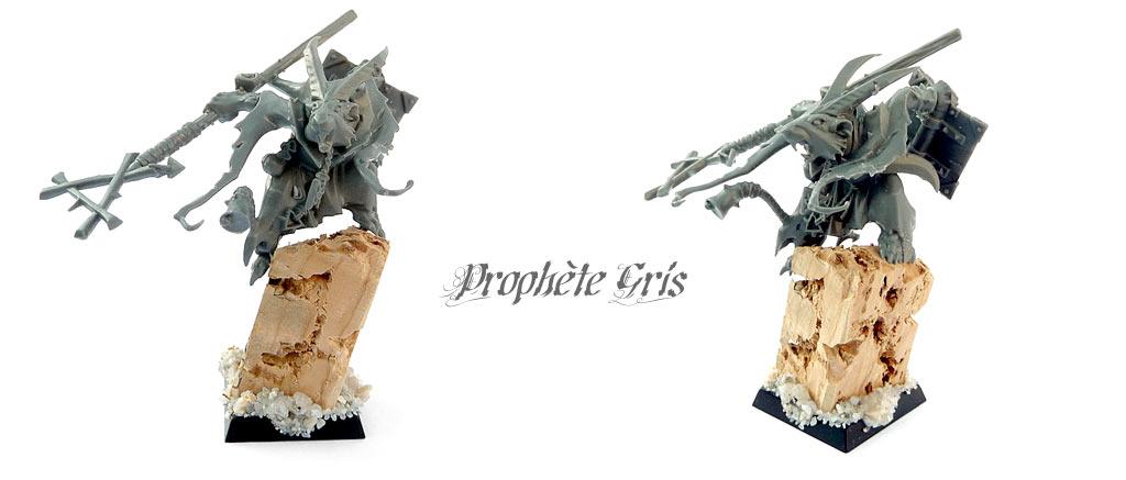 armee-skavens-prophete-gris.jpg